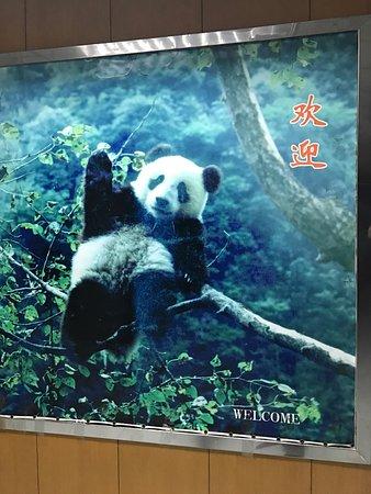 Fuzhou, China: photo5.jpg