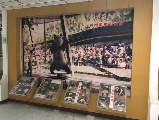 Fuzhou, China: photo6.jpg