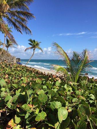 Jupiter Beach Resort: photo5.jpg