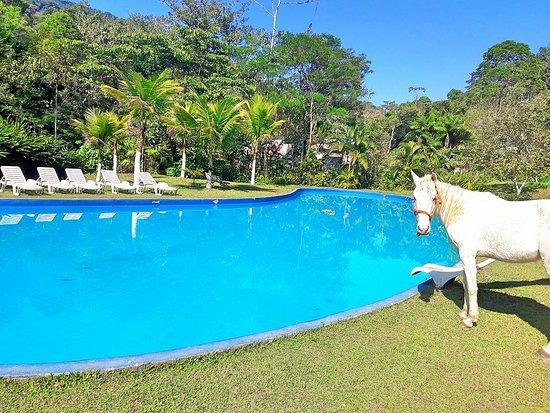 Foto de sitio aguas lindas patrimonio piscina grande for Piscinas hinchables grandes precios