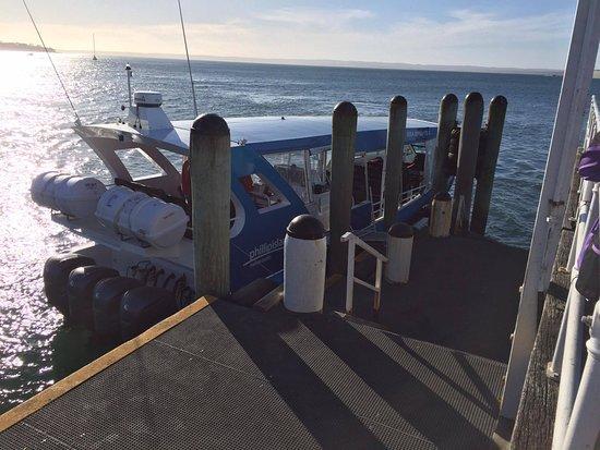 Eco Boat on Phillip Island