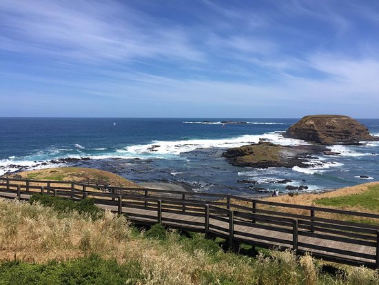 Phillip Island, Australia: The Nobbies
