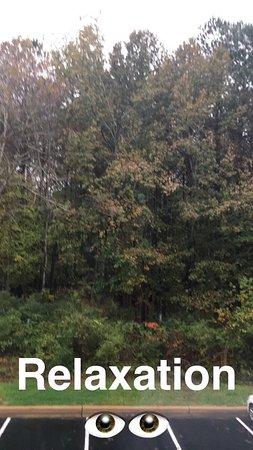 Leesville, Luizjana: photo0.jpg
