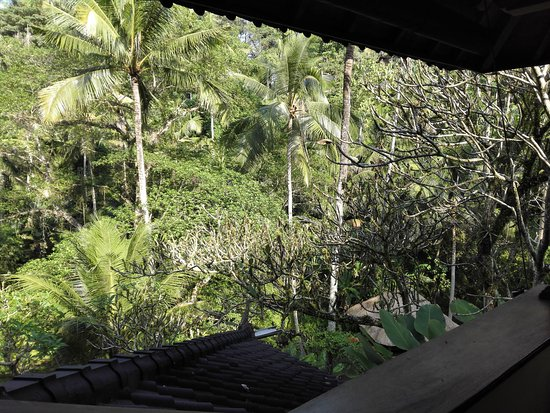 Mas, Indonesia: View from Arjuna Villa living area