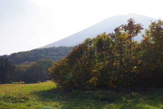 Kayano Heights: 高原からの眺め