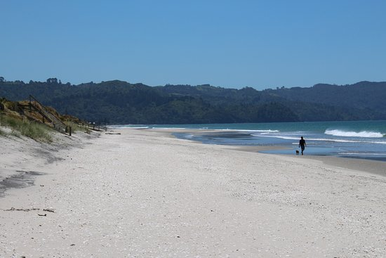 Looking north towards Waihi Beach township