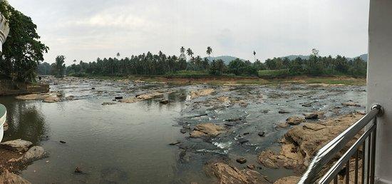 Pinnawala, Sri Lanka: Washing at the river