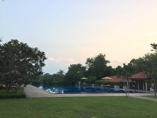 Thirappane, Sri Lanka: photo8.jpg