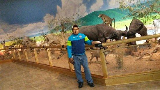 Buda, TX: Cabela's