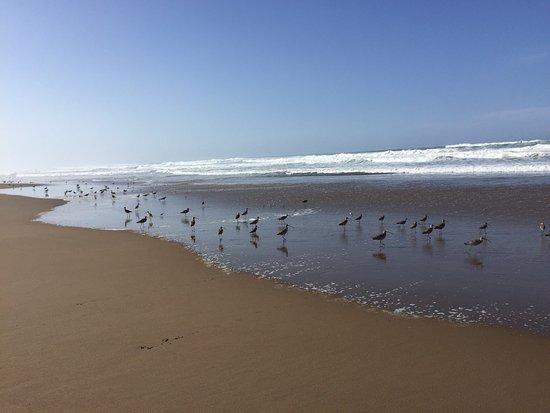 Los Osos, Kalifornien: photo0.jpg