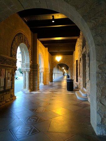 Palo Alto, CA: IMG_20161205_164939_large.jpg