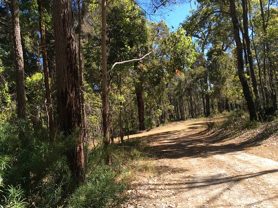 Nannup, Αυστραλία: The country road leading to Mossbrook B&B