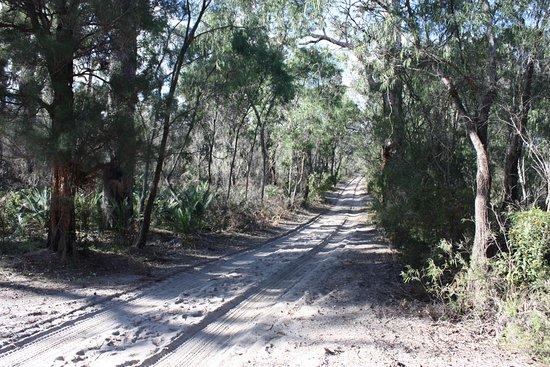 Pemberton, Australia: just before dune system entrance