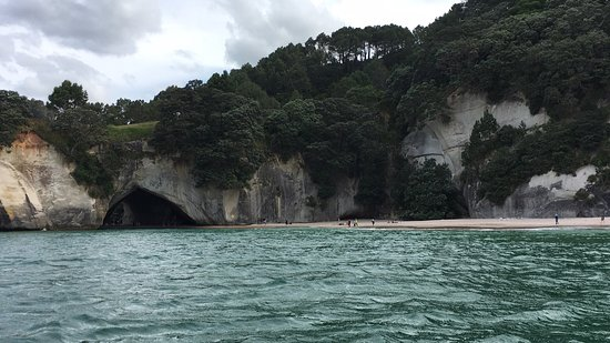 Whitianga, New Zealand: photo3.jpg
