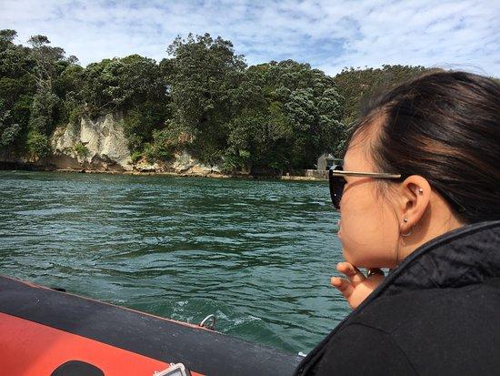 Whitianga, Nya Zeeland: photo5.jpg