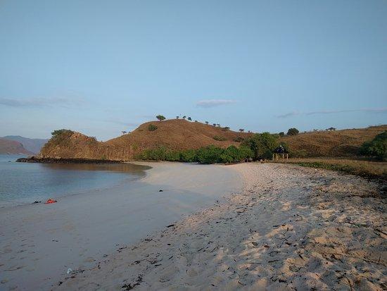科莫多島照片