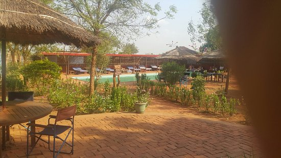 Amarula Lodge Restaurant: 20161205_160623_001_large.jpg