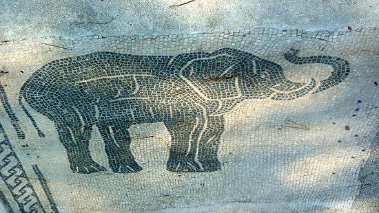 Visit Ostia Antica Roma - 2020 Qu saber antes de ir - Lo ms