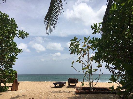 Weligama, Sri Lanka: photo2.jpg