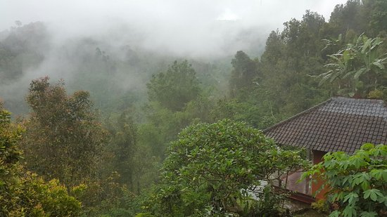 Munduk, Indonesia: Arya Utama Garden Villa