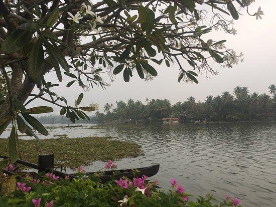 Kumbalam, Ινδία: photo8.jpg