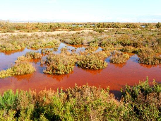 Crevillente, Spain: Tintes rojizos tras las lluvias