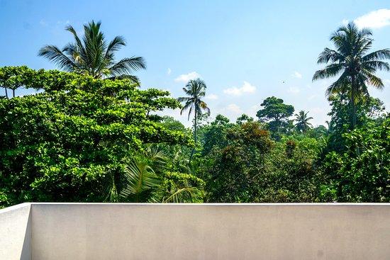 Landscape - Picture of Eden Blue Hotel, Hikkaduwa - Tripadvisor