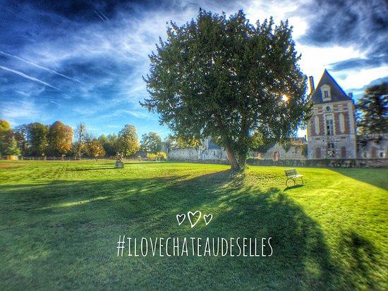 Selles-sur-Cher, Francia: L'if commun et le Pavillon Sully du château de Selles sur Cher