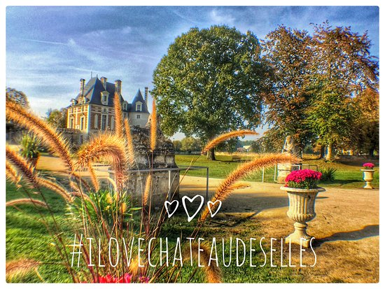 Selles-sur-Cher, Francia: Fleurs et Pavillon Béthune du château de Selles sur Cher