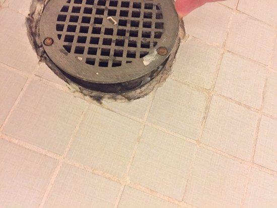 Hilton Garden Inn Wisconsin Dells: Gross broken floor drain in shower