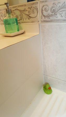 Swansea, Australia: Rubber Ducky