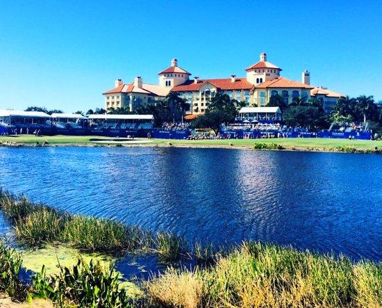 Tiburón Golf Club: Photo looking across the water to The Ritz-Carlton Golf Resort, Naples.