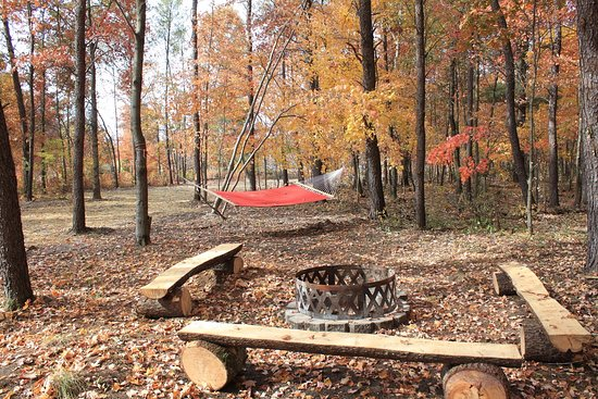 New Lisbon, WI: Cabin - firepit and hammock
