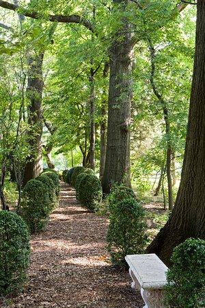 Union, NJ: Serpentine Path