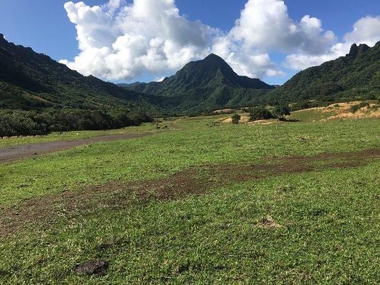 Kaneohe, HI: photo1.jpg