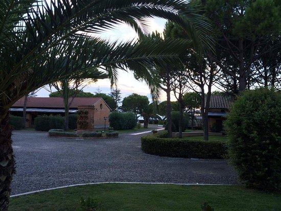 Fattoria San Lorenzo : received_1273320816025133_large.jpg