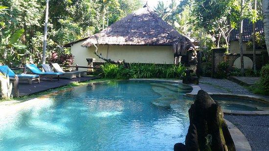 Obraz Ubud Sari Health Resort