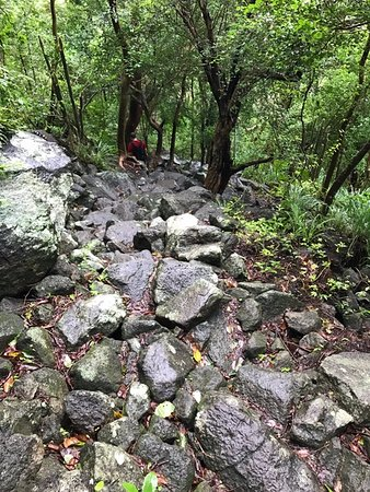 Vieux Fort, St. Lucia: Lots of rocks and steep descent / ascent on Gros Piton