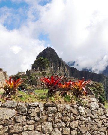 Huayna Picchu Elevation Feet Above Sea Levelabout - Elevation in feet above sea level