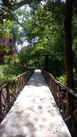 Hacienda San Miguel: Camino hacia alberca