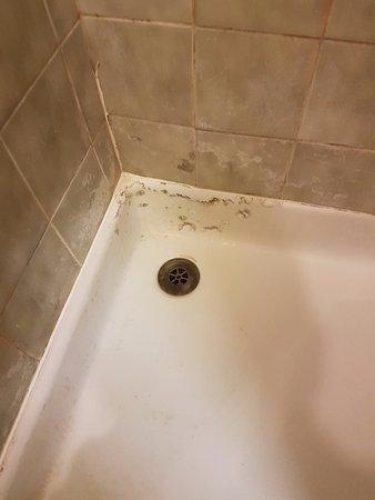 Hallam Hotel: Grotty shower