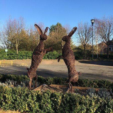 Kettering, UK: photo3.jpg