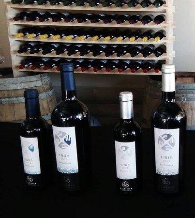 Valle de Guadalupe, Meksika: Me gusto la opción de que tienen las botellas en 2 presentaciones.