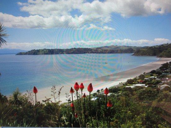 Onetangi, New Zealand: photo2.jpg