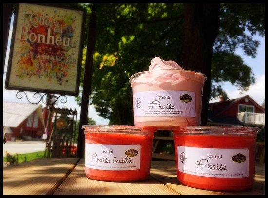 Compton, Kanada: Sorbets et gelatos maison, faits avec bonheur
