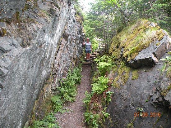 Port Rexton, Canadá: A unique trail.