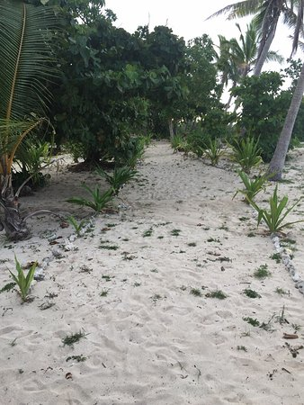 Denarau Island, Fiji: Captain Cook Cruises - Fiji Day & Dinner Cruises