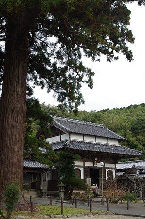 Ankokuji Temple