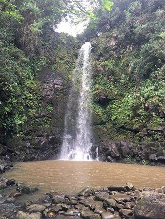 Kapaau, Hawaï : photo1.jpg