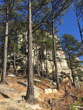 Mount Airy, Carolina do Norte: photo5.jpg